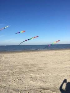 Kites-